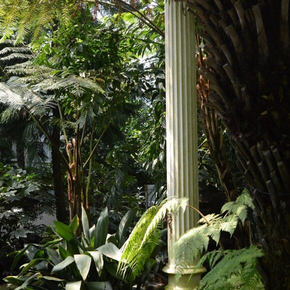 Das Palmenhaus in Schönbrunn